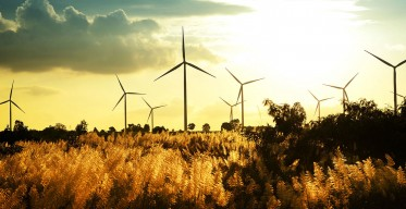 specialism-wind-farms